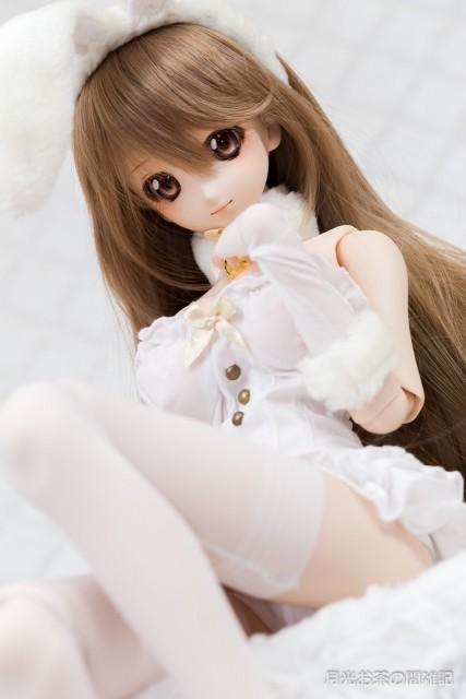 doll-2900