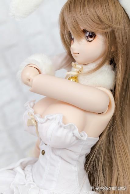 doll-2903
