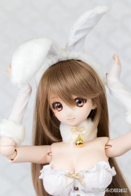doll-2906