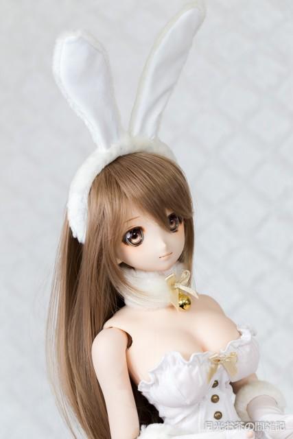 doll-2907