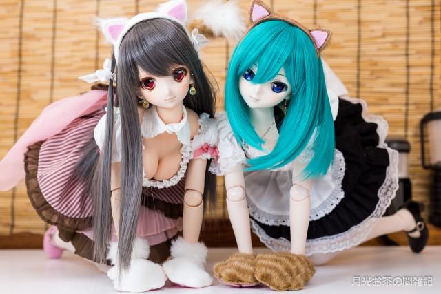 doll-1211