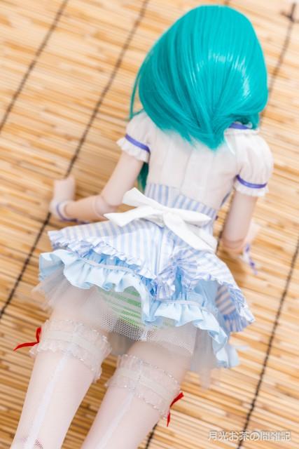 doll-1244