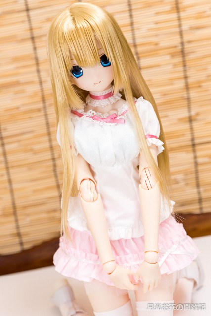 doll-1254